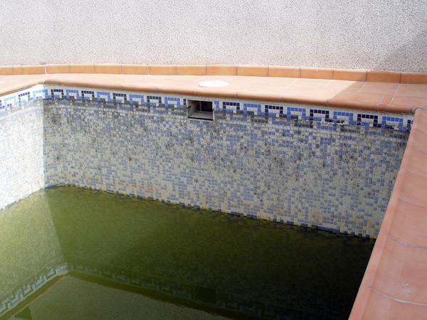 Piscinas el melenas gresite para piscinas en granada - Como limpiar el fondo de una piscina ...